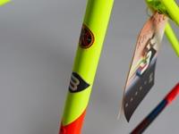 Picture of Basso Loto Frameset - 55cm