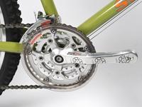 Picture of Softride Lizard MTB Bike