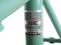 Picture of Bianchi Racing Special Frameset -  55cm
