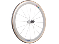 Picture of Campagnolo Shamal Rear Wheel - Silver