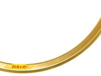Velocity Deep V - 700c - Gold NMSW
