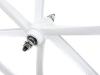 Teny 6 Spoke Front Wheel - White