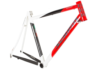 Picture of Scapin Dyesys Road Frame - White