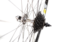 Campagnolo Omega x Shimano RX100 Wheelset