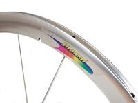 Campagnolo Shamal Front Wheel - Silver